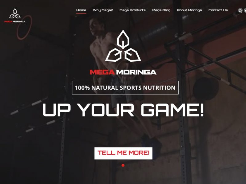 Mega Moringa website screenshot