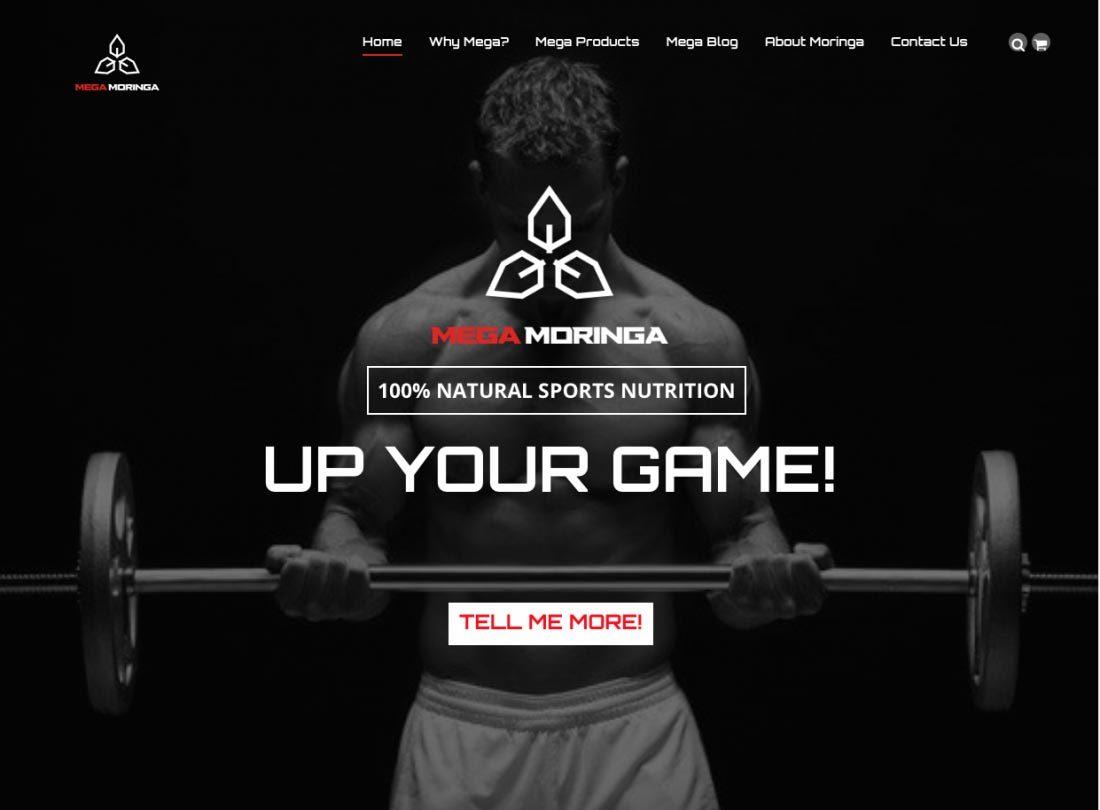 Mega Moringa website screen shot